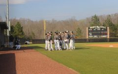 Swinging into Baseball Season